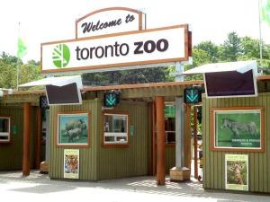 toronto-zoo